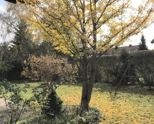 VERMIETET! Idyllisch und ruhig gelegenes Einfamilienhaus mit Garten in Höhenkirchen-Siegertsbrunn